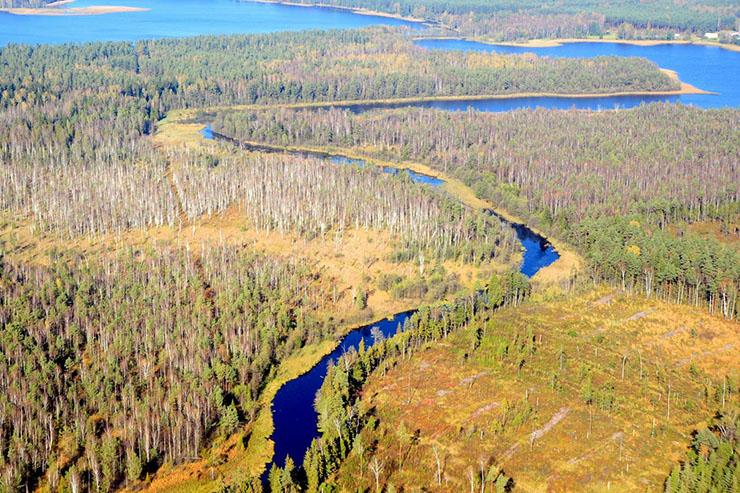 Būkos upės ištaka